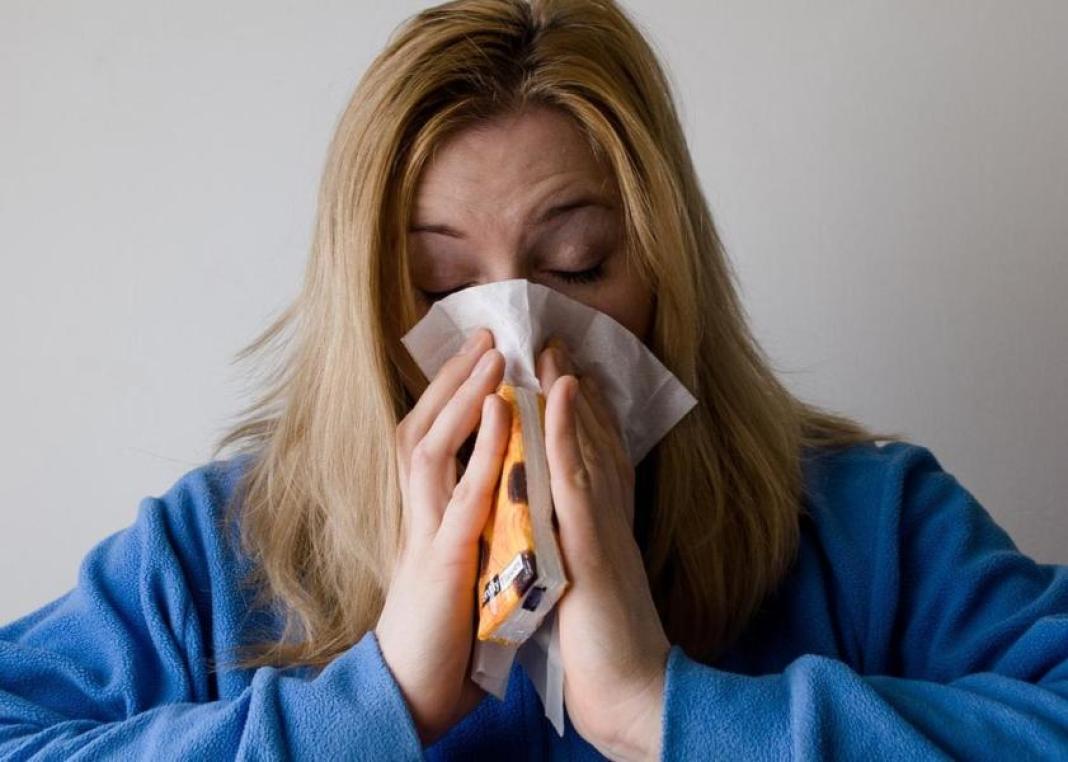 E' arrivato in Italia il virus dell'influenza